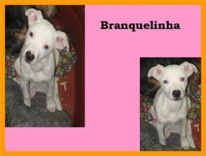 Branquelinha